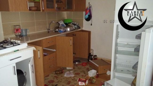 Aç Kalan Ayılar Yayla Evlerine Dadandı