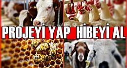 Cumhurbaşkanı İmzaladı : Hayvancılık Yatırımlarına Hibe Desteği Verilecek