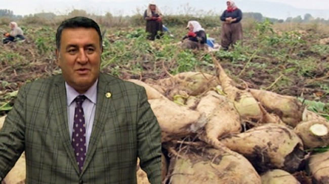 CHP Niğde Milletvekili Ömer Fethi Gürer,  Pancar Üreticisi Fiatın Açıklanmasını Bekliyor