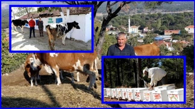 Muğla ve Aydın'da 4,5 Milyon TL ORKÖY Desteği