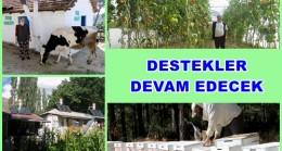 Orman Köylümüze 250 Milyon TL Destek