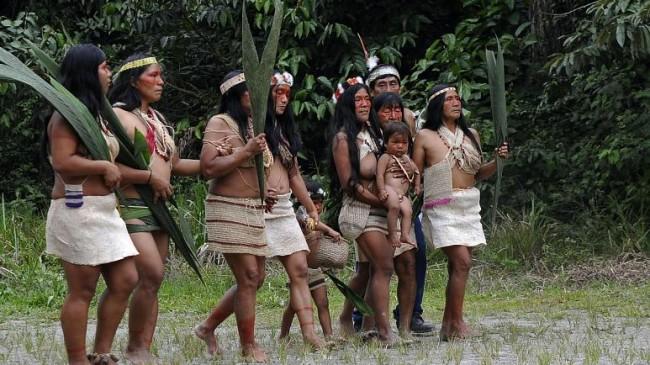 Amazonlarda Salgın Yayılıyor: Ekvador Yerlilerinde ilk Covid-19 Vakası Görüldü