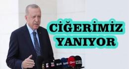 Cumhurbaşkanı Erdoğan :Hiç Bir Vatandaşımızı Mağdur Etmeyeceğiz
