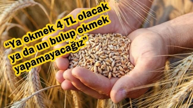 """""""Küçük Çiftçi, Kurum Eliyle Alıcılara Dövdürüldü"""""""