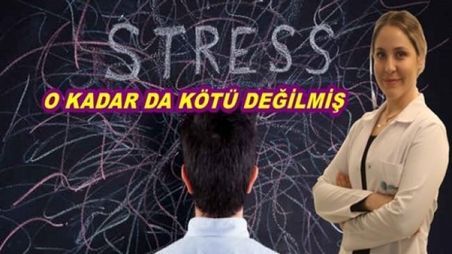 YÜZYILIN HASTALIĞI STRES'İN SONUNDA İYİ BİR YANI BULUNDU…