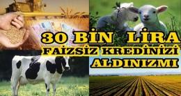 TARIM ALANINDA DESTEKLER DEVAM EDİYOR