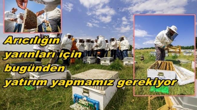Arı Yetiştiricileri Birliği İstanbullu Arıcıların Yanında